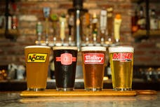 Holley 36-454 16oz Glasses Assortment with Logo, 4pk