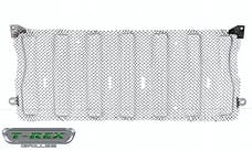 T-Rex Grilles 44493 Sport  Grille, Polished, Stainless Steel, 1 Pc, Insert