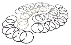 Omix-Ada 17430.31 Piston Ring Set Std, 5.9L