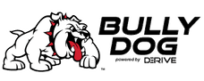 Bully Dog 31306 A-Pillar Pod Mount